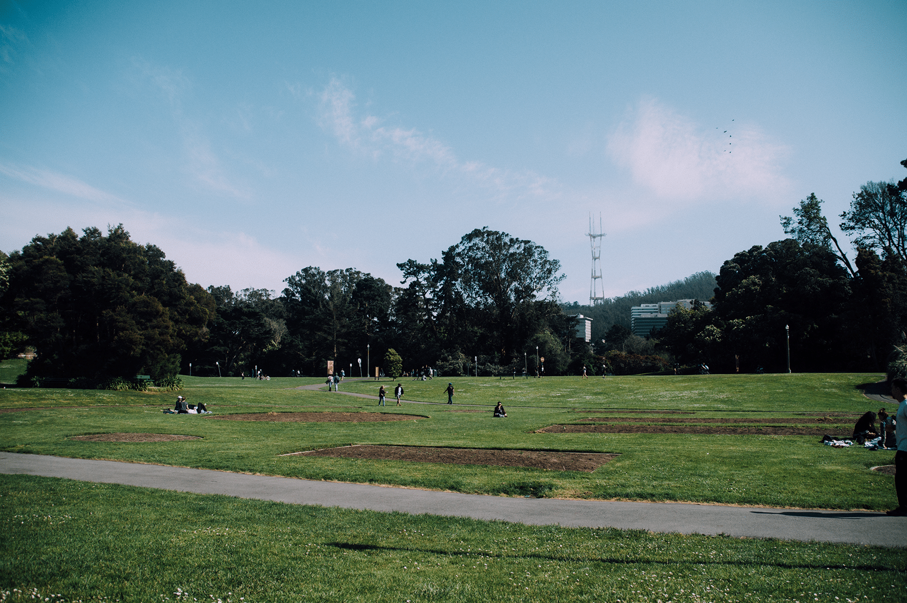 golden-park-san-francisco