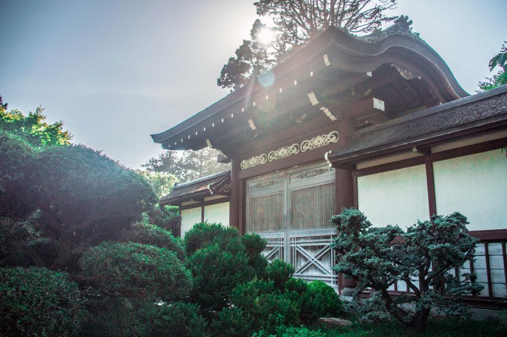 japanese-tea-garden-san-francisco