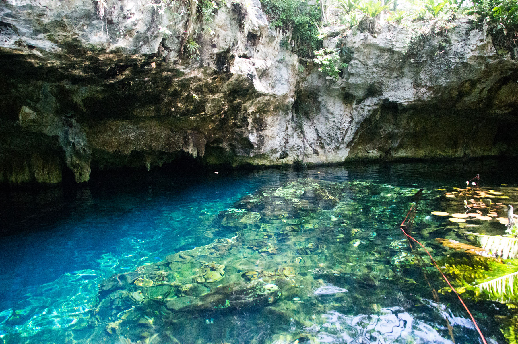 cenote-tulum-mexique