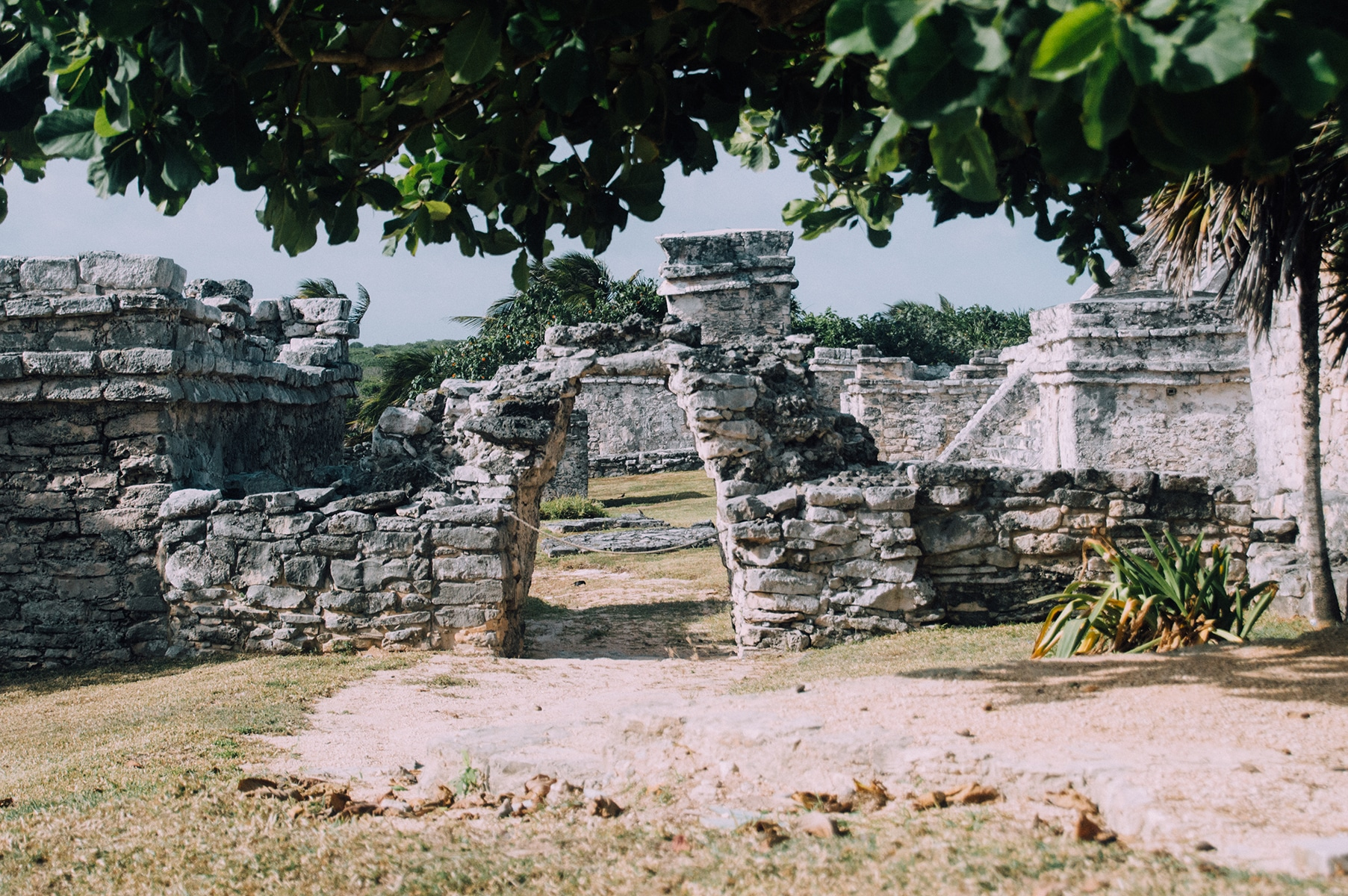 Ruines Tulum The Frenchie Abroad