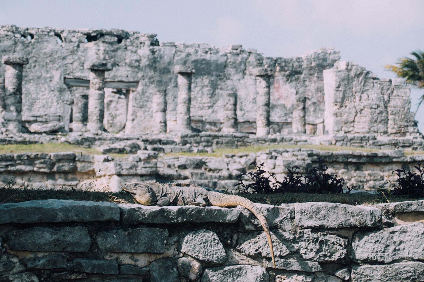 Voyage Tulum Ruines