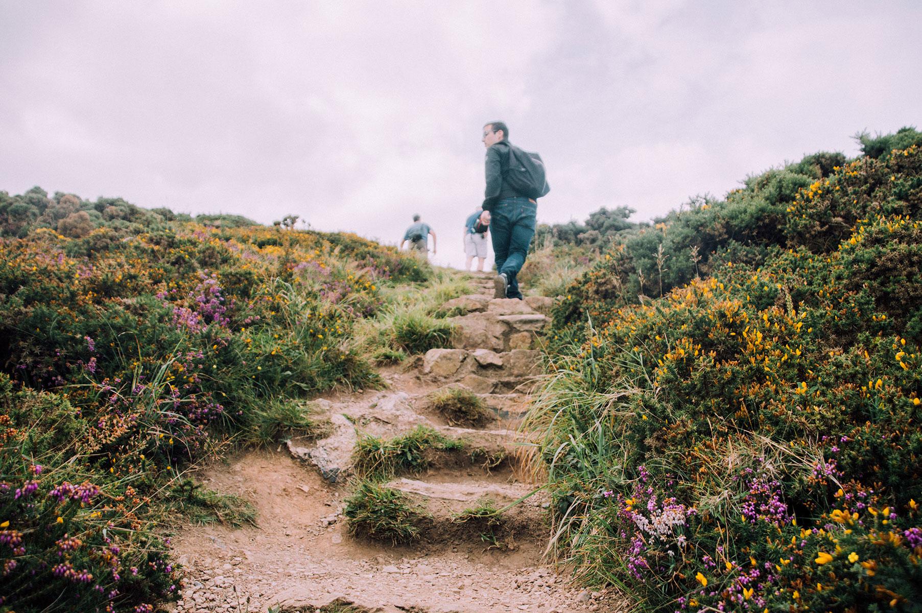 dublin_howth_cliff_walk_008