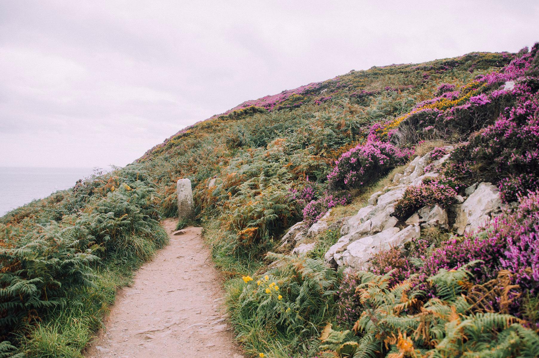 dublin_howth_walk_cliff_002