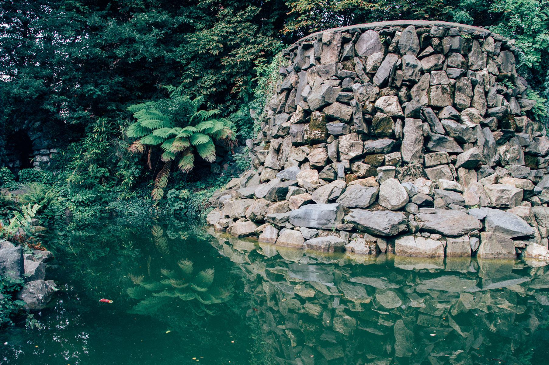 dublin_iveagh_garden