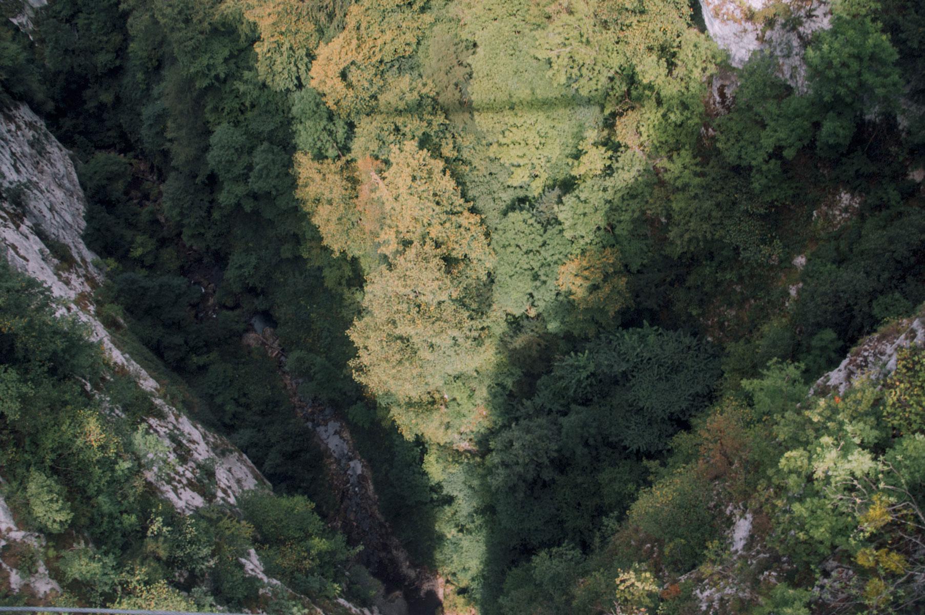 Holzarte Pyrénées Atlantiques