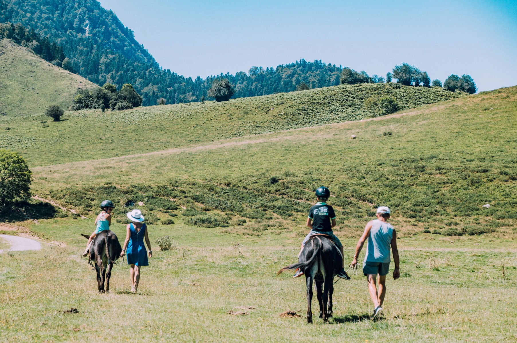 Chevaux Pyrénées enfants